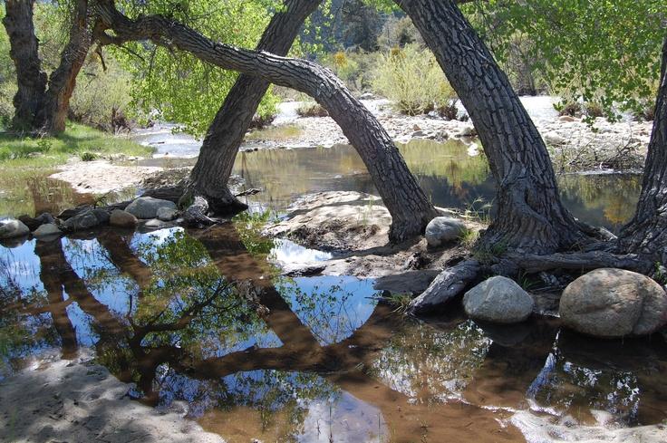Kern river outdoors pinterest rivers for Kern river fishing spots