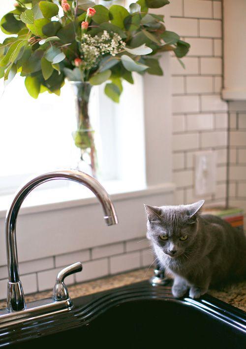 Black sink.