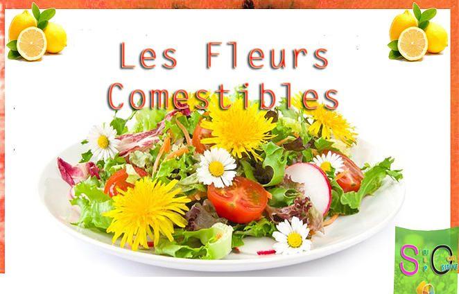 So Bio, So Local, So Positive | Mangeons des Fleurs :-)