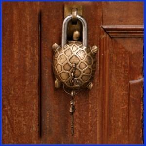 1000 ideas about door locks on pinterest security door biometric security and door handles - Turtle door knocker ...