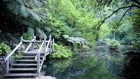 Alfred Nicholas Gardens #yarravalley #dandenongranges #victoria #travel