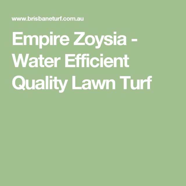 Empire Zoysia - Water Efficient Quality Lawn Turf