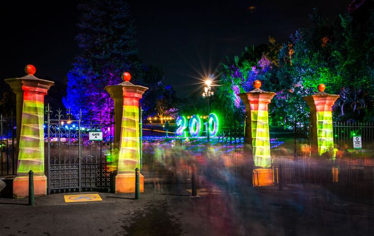 Vivid comes to the Botanical Gardens