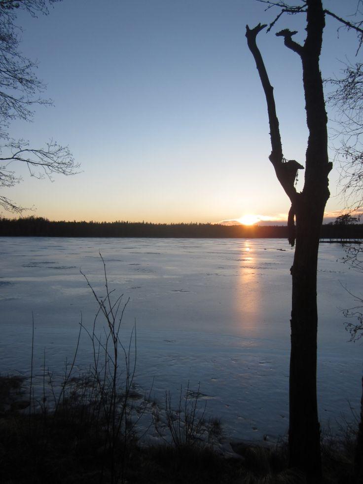 Sun set in Koirasalmi, Salamajärvi National Park, in Kivijärvi #koirasalmi #salamajaervinationalpark #kivijaervi