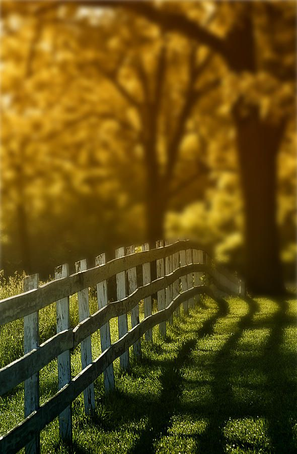 Country fence - ©Michael Huddleston (via FineArtAmerica)