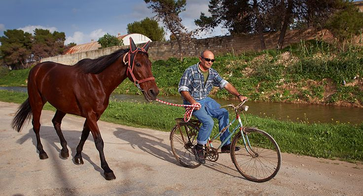 Pedal power and horse power: Horses Power, Hors Power