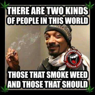 Two types of people | Marijuana | Pinterest | Cannabis, Weed and Weed humor