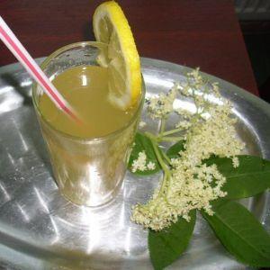 Racoritoare din floare de Soc.  3 litri de apa rece   o jumatate de lamaie   o lingura rasa de sare de lamaie   10 linguri de zahar   3 flori mari de soc