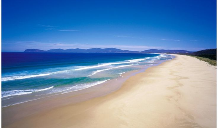 Bruny Island, Tasmania This exclusive spot has an abundance of diverse wildlife, featuring white wallabies, fairy penguins, fur seals, and various exotic birds. This tiny island has crystal blue waters and pristine sands. Plus, camping is free. Gallery: Best coastal campsites in Australia