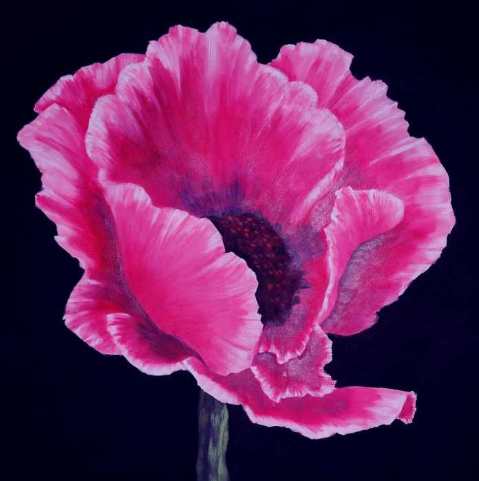 1000 ideas about poppies painting on pinterest poppies - How to paint poppy flowers ...