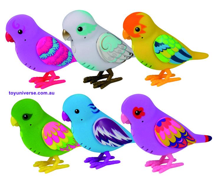 Walmart Toys Birds : Unique little live pets ideas on pinterest walmart
