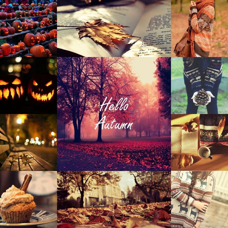 Give me 3 reasons why autumn/fall is better than winter. for essay?