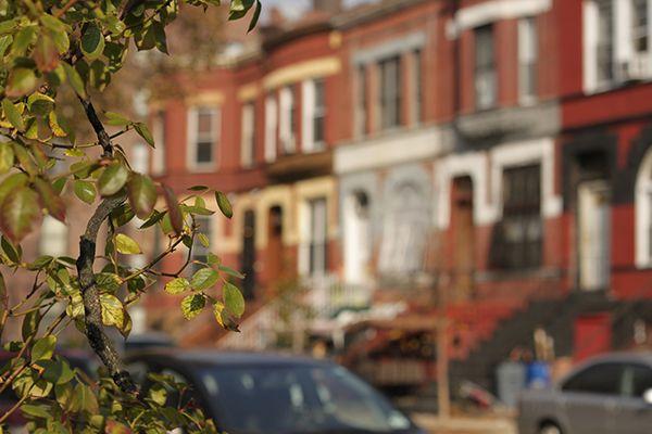 Brooklyn Stuyvesant Heights