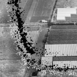 The A. G. West and Co Nurseries, Cottingham, 1948. This image has been produced from a damaged negative. | Britain from Above