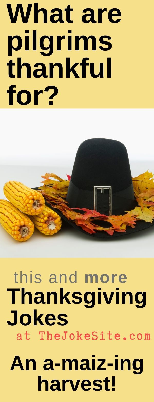 Thanksgiving Humor Funny thanksgiving, Thanksgiving