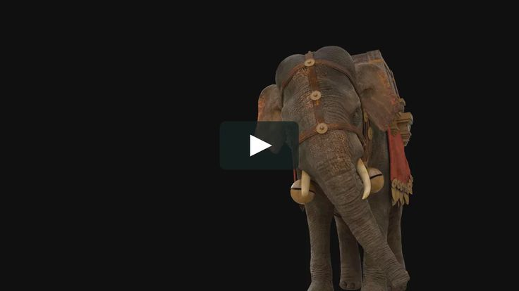 A full-CG animation with realistic elephant for brand new theme park in Rome CINECITTA WORLD.  CREDITS  PRIMAL SHAPE: Previs, Animation MINIMO VFX: Modeling,…
