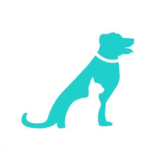 2017 Embrace Review - Pet Insurance - Reviews.com