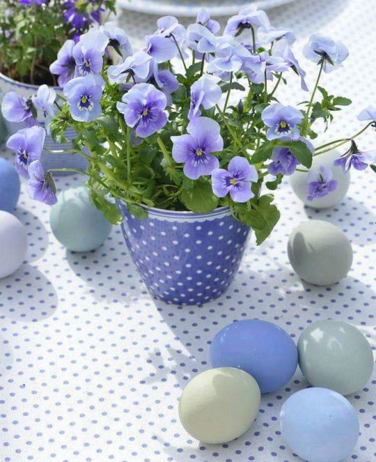 724 besten Spring   Frühling Bilder auf Pinterest Babyhäkelei
