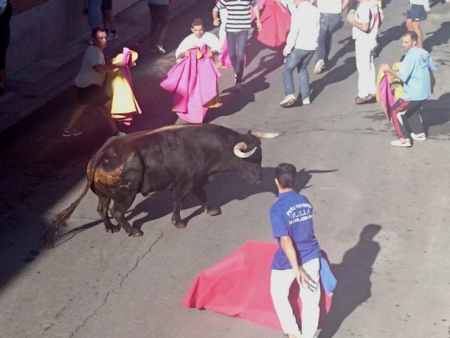 131.890 euros para los festejos taurinos de Fuenlabrada (Madrid)