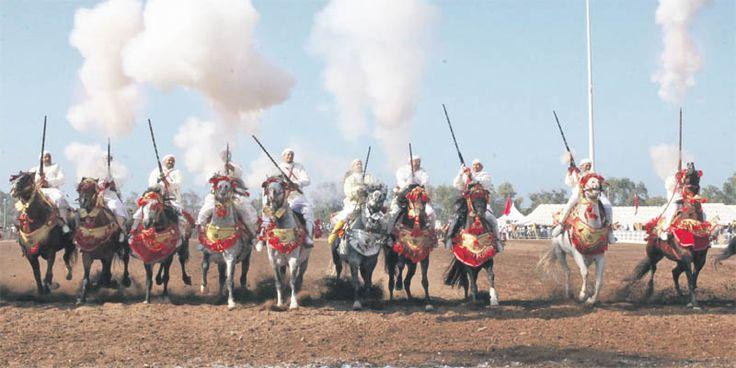 Les arts équestres traditionnels à l'honneur - L'Économiste