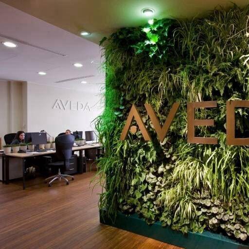 DIY Aveda smell - according to Aveda : lavender, ylang-ylang, bergamot, rosemary, peppermint, and orange.