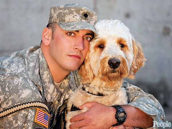 Bringing A Dog Home From Iraq