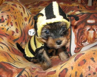 make clothes for dogs | Popular items for dog coat on Etsy