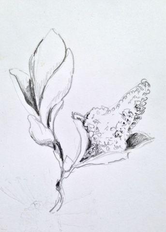 Form & Känsla: Skiss i blyerts