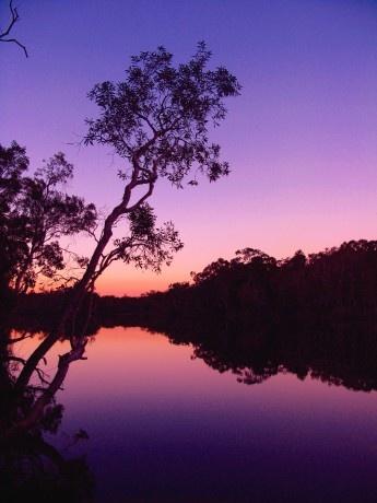 Noosa Everglades (resumecompanion.com) #Australia