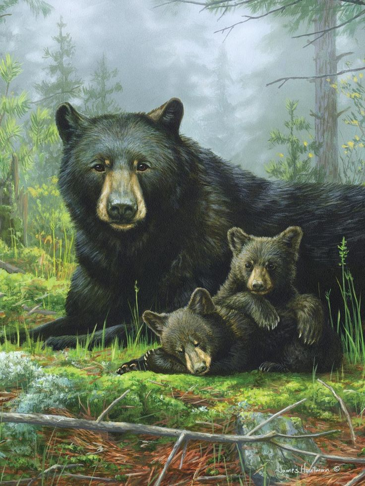 hautman brothers paintings - Google Search