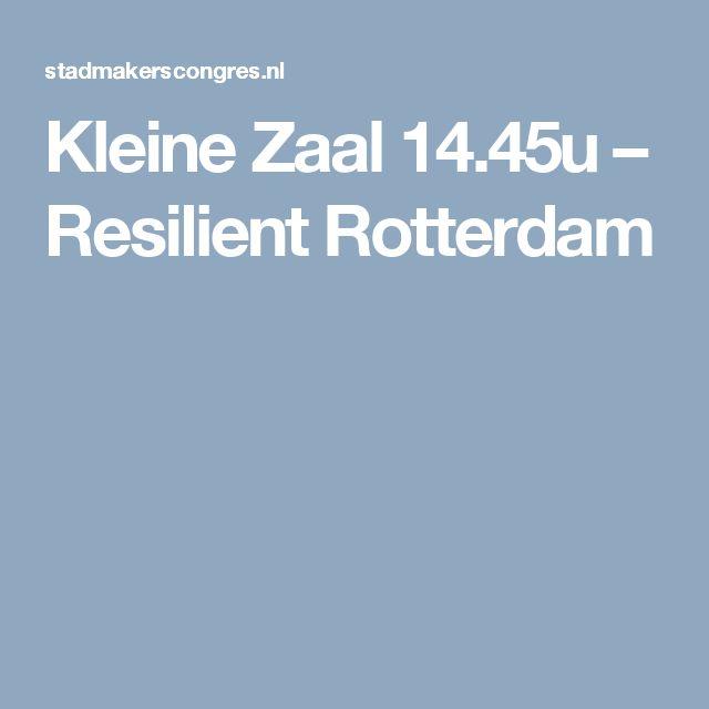 Kleine Zaal 14.45u – Resilient Rotterdam