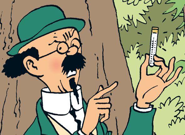 Les Aventures de Tintin - Le professeur Tournesol / Professor Kalkyl