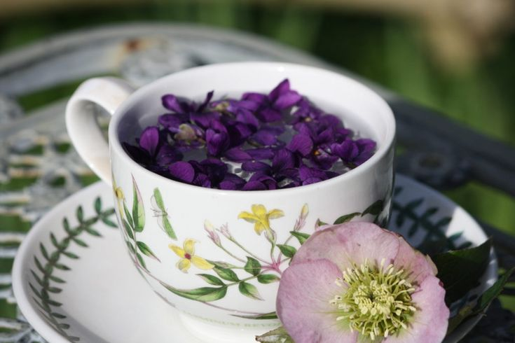 Sweet Violet Tea, soothing for the throat and inflamed gums, read more......
