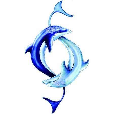 This is really neat! This could possibly be a tattoo idea for me! :) Awesome dolphin tattoos