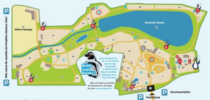 Euregiozoo, Aachener Tierpark  - Zoo und Spielgelände ab 9 bis 18.30 Uhr / 16.30 Uhr in Wintermonaten 6 Euro, Kinder 3 Euro Jahreskarte 30 Euro, Kinder 12,50 Euro