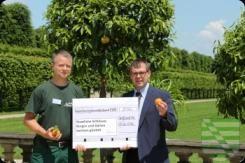 Beim zweiten Treffen der Paten für Orangenbäumchen, die im Dresdner Zwinger aufgestellt werden, überreichte der Freundeskreis Schlösserland Sachsen e.V. wieder einen Scheck mit eingesammelten Spenden.
