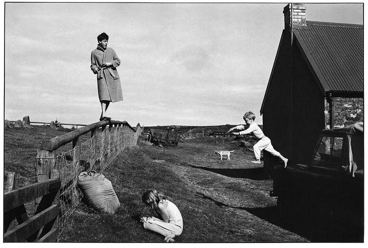 The photographs of Linda McCartney | Pesti Stílus