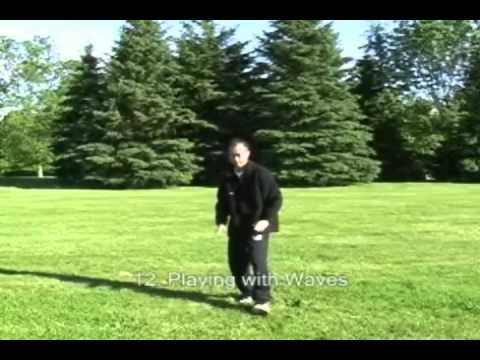 Tai Chi Qigong Shibashi is a great exercise for you to do at home. Mostly tai chi master share their knowledge with some price. Here you can learn tai chi shibashi for free. The video had 2 part and you can also download pdf tutorial free of charge (just visit their website)