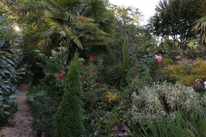 Les 169 meilleures images propos de jardin sauvage for Jardin sauvage
