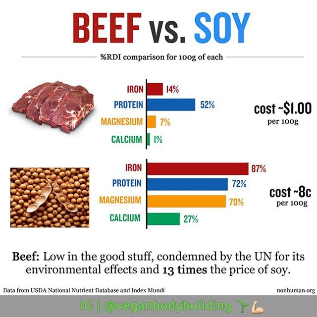 """the environmental impact of eating beef Insects are also rich in protein and contain all the nutrients that we get from meat  """"traditional farming involves a lot of environmental impacts in."""
