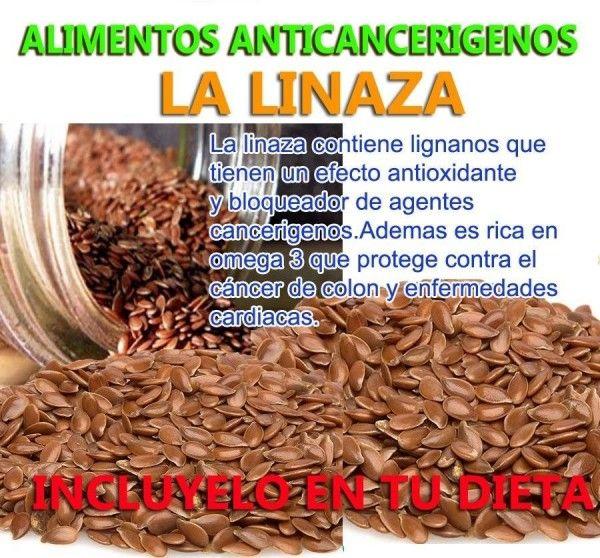 la-linaza lino...propiedades anticancerigenas