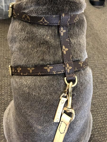 e70bf3ca0670 PRE ORDER - Luxury Up-cycled Louis Vuitton Harness