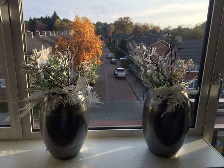 Twee vazen voor het raam, vast voor kerst haha. Heb takken gekocht bij groenrijk en bij elkaar gestoken.
