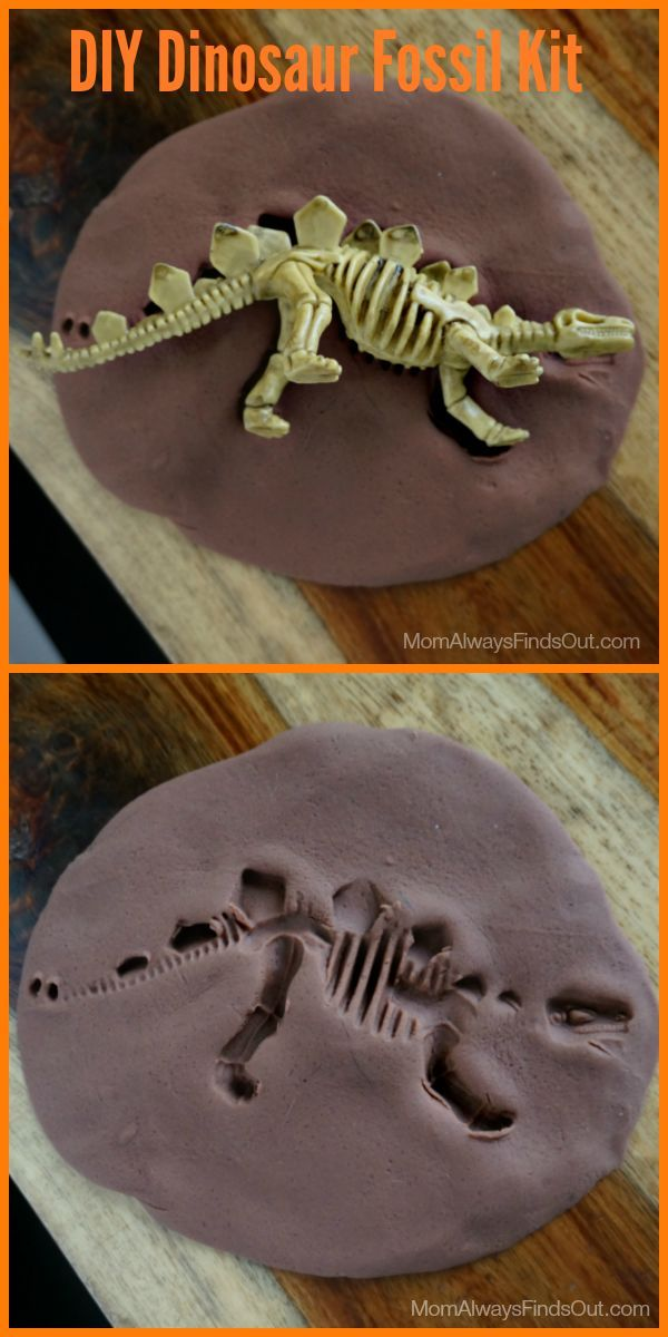 dinosaur crafts  diy fossil kit and party favors