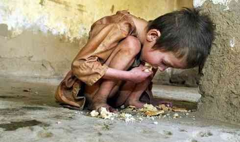 World Hunger Facts - chronically hungry | School- world hunger ...