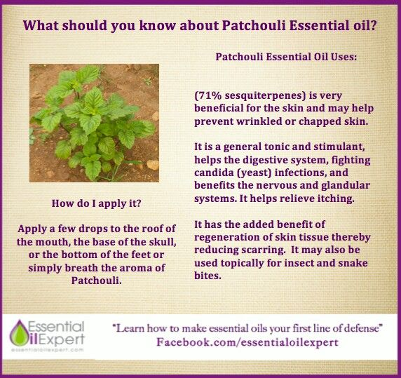 What you should know about Patchouli essential oil. To purchase oils or for more info go to wwwEssentialOilsEnhanceHealth.com