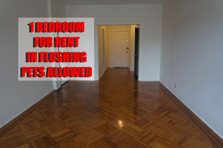 Studio Apartment Queens Nyc large 1 apartment in flushing, queens, nyc for only $1500