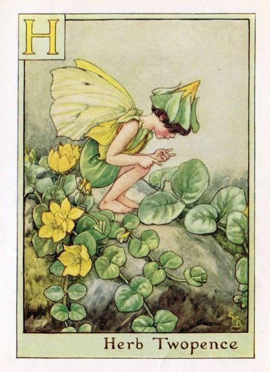 This beautiful Herb Twopence Alphabet Flower Fairy Vintage Print by Cicely Mary Barker was printed c.1940 and is an original book plate from an early Flower Fairy book. Cicely Barker created 168 flower fairy illustrations in total for her many books.