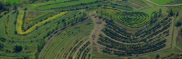 Savanna Institute - Curvas de nivel, keyline, food forest, permaculture http://www.savannainstitute.org/images/nff_arial.jpg