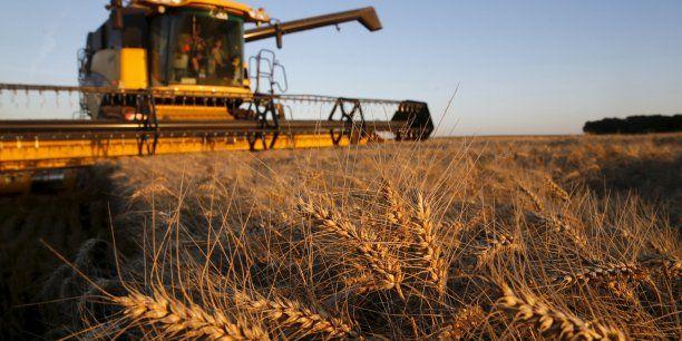 Accaparement des terres agricoles par les marchés financiers au détriment des agriculteurs... http://www.latribune.fr/entreprises-finance/industrie/agroalimentaire-biens-de-consommation-luxe/les-terres-agricoles-sont-la-nouvelle-poule-aux-oeufs-d-or-des-financiers-506715.html